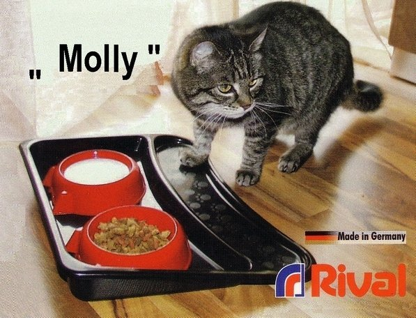 souprava-misek-s-podnosem-rival-molly-906-000